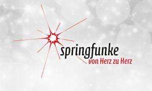 logo_springfunke